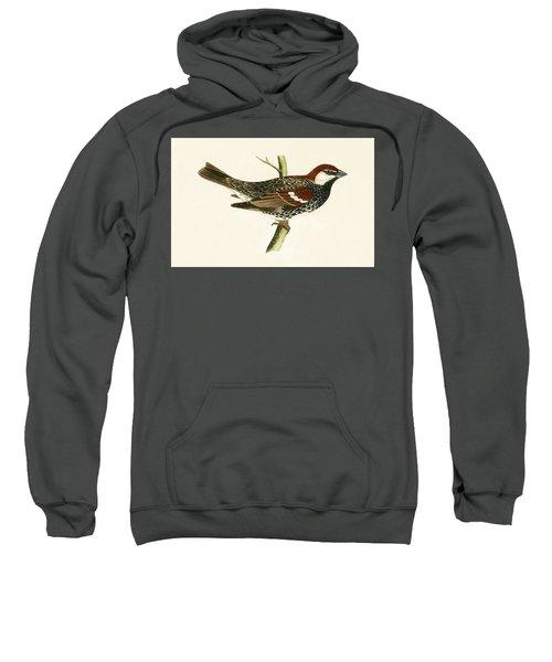 Spanish Sparrow Sweatshirt by English School