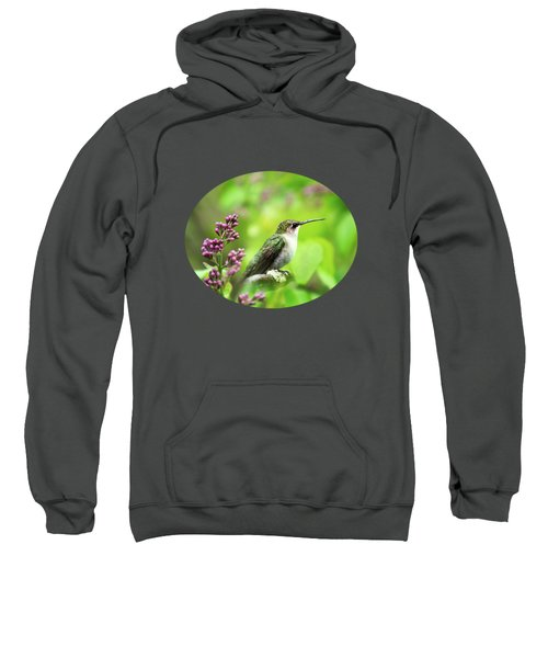 Spring Beauty Ruby Throat Hummingbird Sweatshirt by Christina Rollo