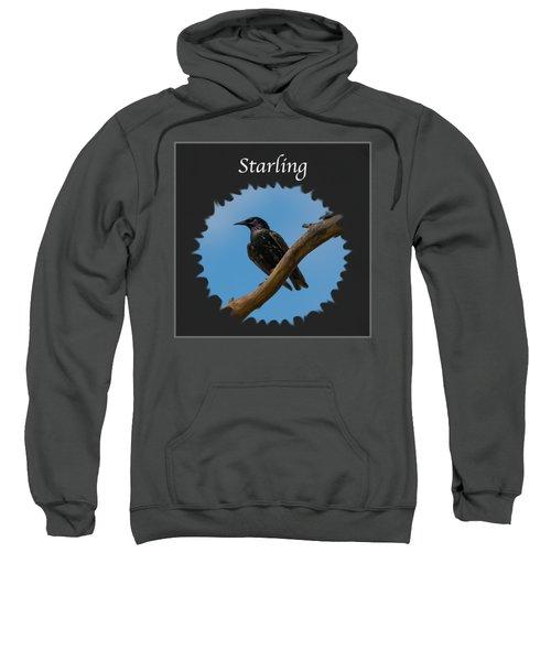 Starling   Sweatshirt by Jan M Holden