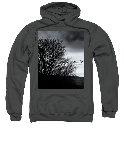 Starlings Roost Sweatshirt by Philip Openshaw