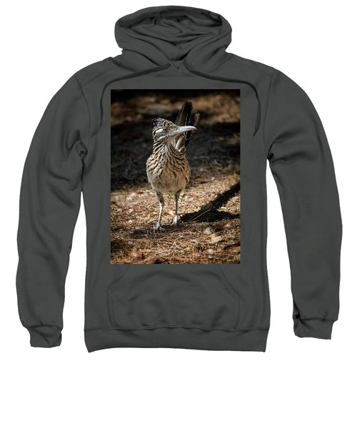 The Greater Roadrunner Walk  Sweatshirt by Saija Lehtonen