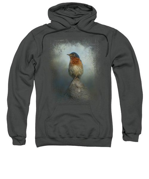 The Highest Point Sweatshirt by Jai Johnson