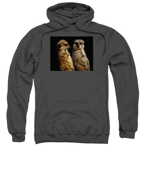 The Meerkats Sweatshirt by Ernie Echols