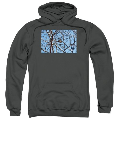 The Ruffed Grouse Flying Through Trees And Branches Sweatshirt by Asbed Iskedjian