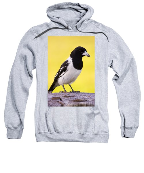 Fencepost Magpie Sweatshirt by Jorgo Photography - Wall Art Gallery
