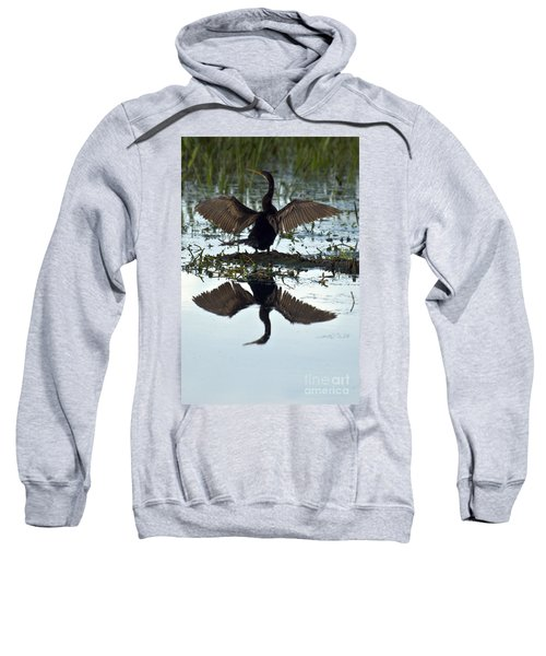 Anhinga Sweatshirt by Mark Newman