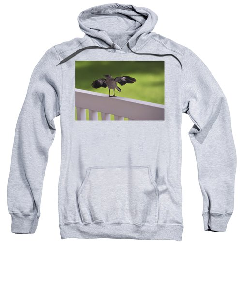 A Little Visitor Northern Mockingbird Sweatshirt by Terry DeLuco