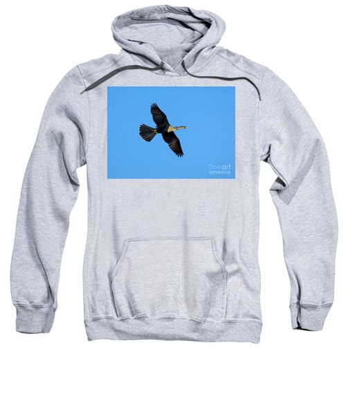 Anhinga Female Flying Sweatshirt by Anthony Mercieca