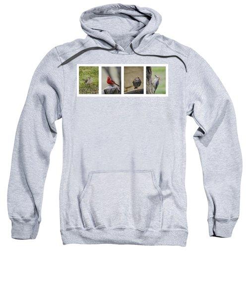 Backyard Bird Series Sweatshirt by Heather Applegate