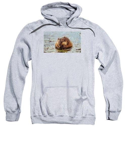 Beaver Portrait On Canvas Sweatshirt by Dan Sproul