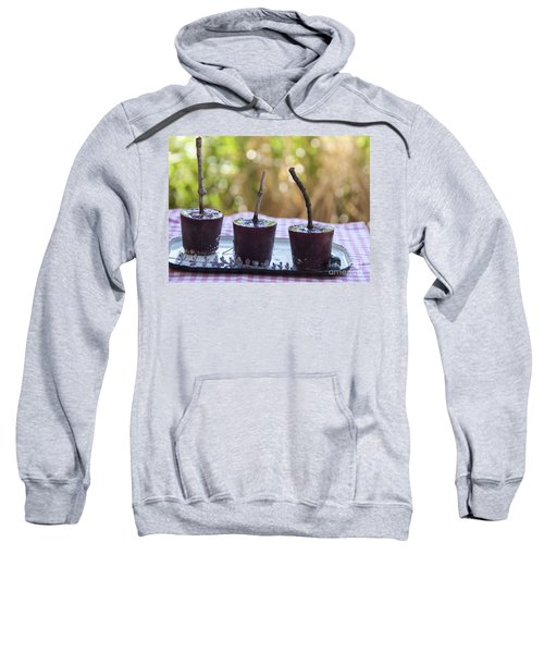 Blueberry Ice Pops Sweatshirt by Juli Scalzi