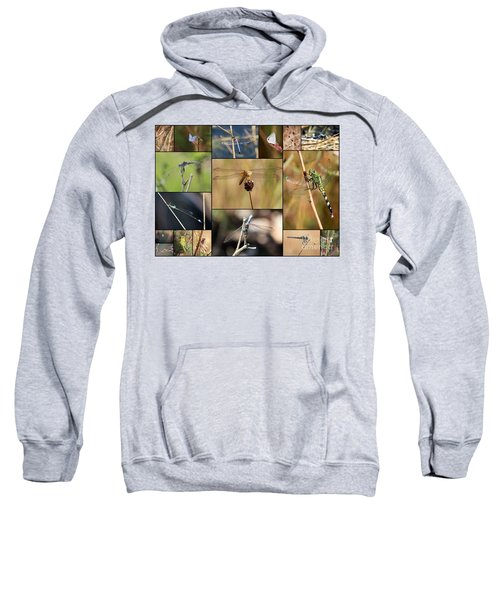 Collage Marsh Life Sweatshirt by Carol Groenen