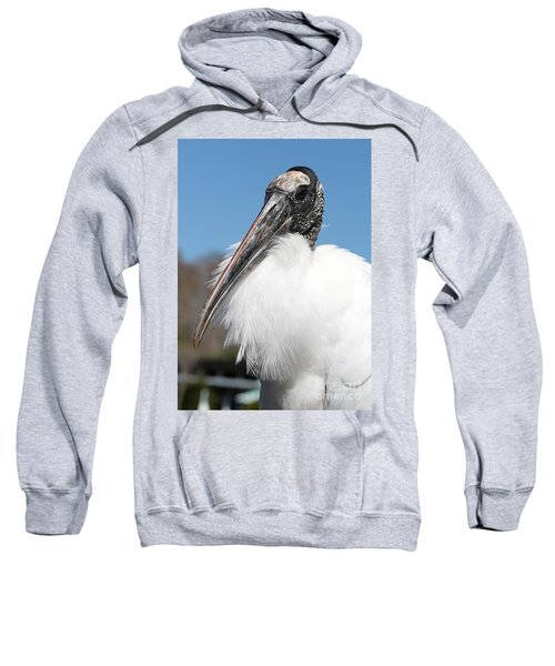 Fluffy Wood Stork Sweatshirt by Carol Groenen