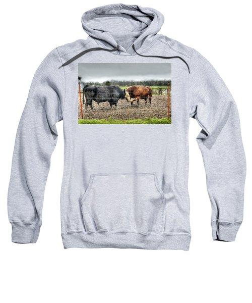 Head To Head Sweatshirt by Cricket Hackmann