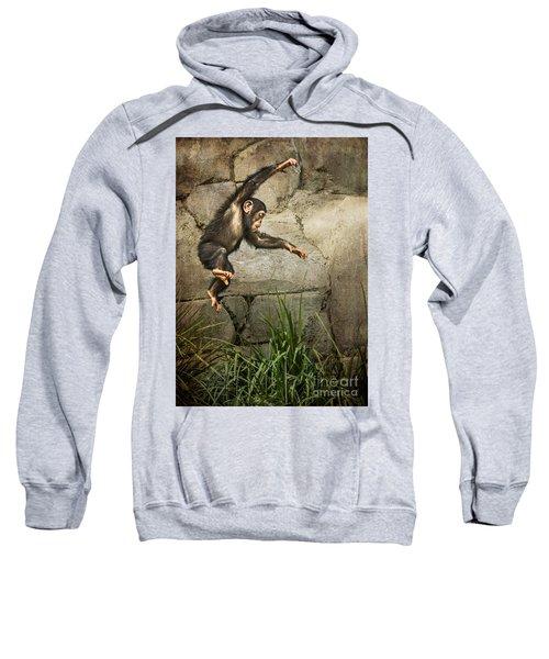 Jump For Joy Sweatshirt by Jamie Pham
