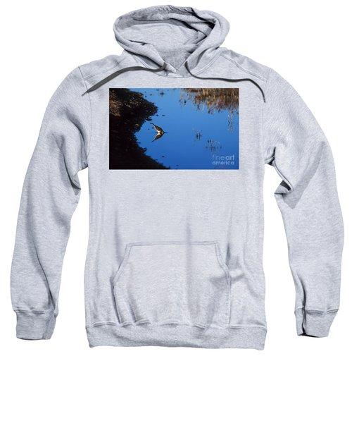 Killdeer Sweatshirt by Steven Ralser