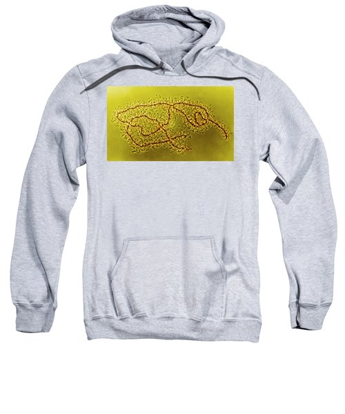 Lampbrush Chromosomes Newt, Lm Sweatshirt by Science Source