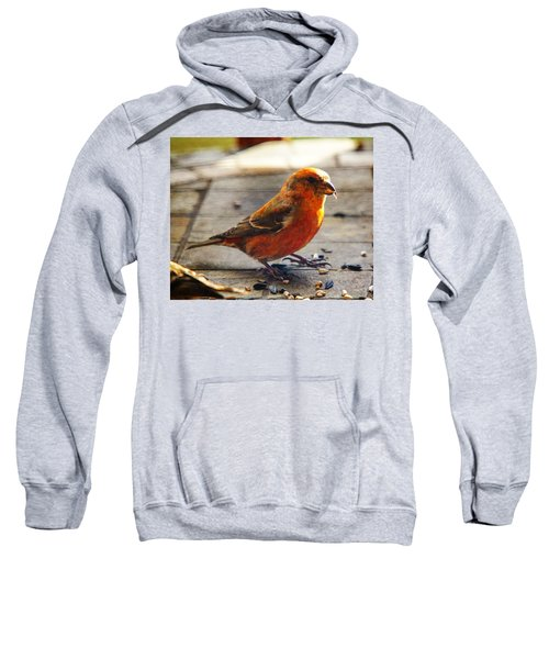 Look - I'm A Crossbill Sweatshirt by Robert L Jackson