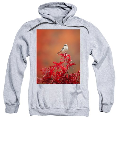 Mockingbird Autumn Sweatshirt by Bill Wakeley