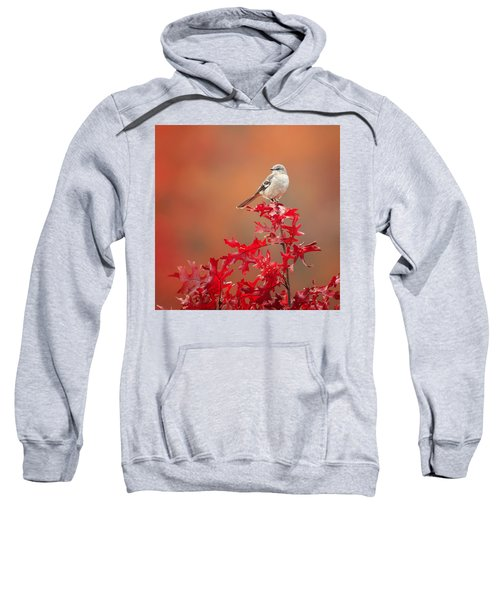 Mockingbird Autumn Square Sweatshirt by Bill Wakeley