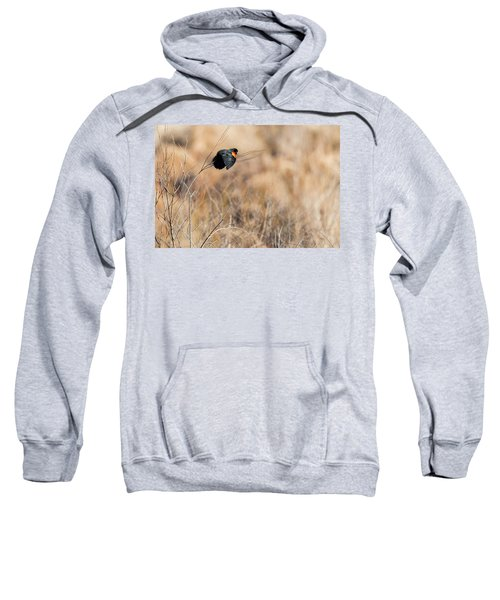 Springtime Song Sweatshirt by Bill Wakeley