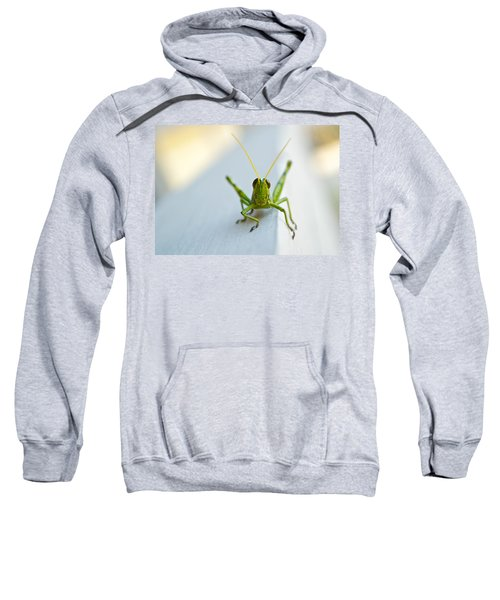Staring At Me Sweatshirt by Shelby  Young