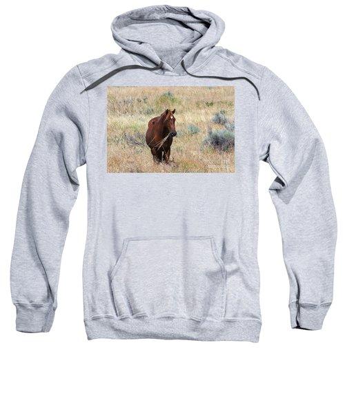 The Odd Couple Sweatshirt by Mike  Dawson
