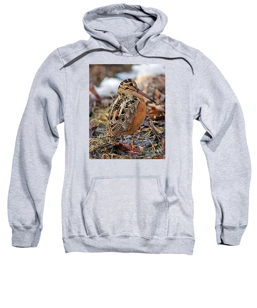 Timberdoodle The American Woodcock Sweatshirt by Timothy Flanigan