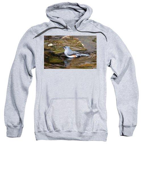 Tufted Titmouse In Pond II Sweatshirt by Sandy Keeton