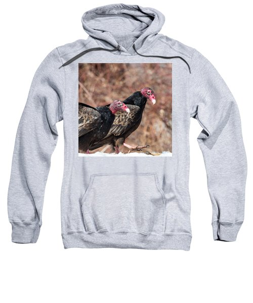 Turkey Vultures Square Sweatshirt by Bill Wakeley