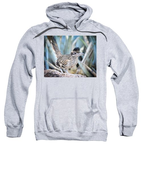 A Juvenile Greater Roadrunner  Sweatshirt by Saija  Lehtonen