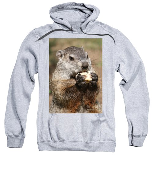 Animal - Woodchuck - Eating Sweatshirt by Paul Ward