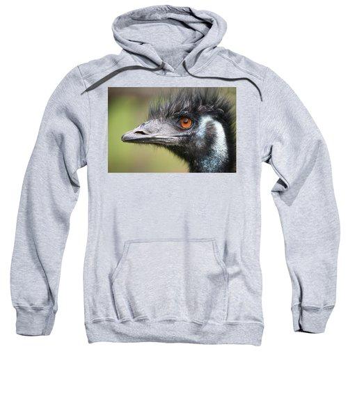 Emu Sweatshirt by Karol Livote
