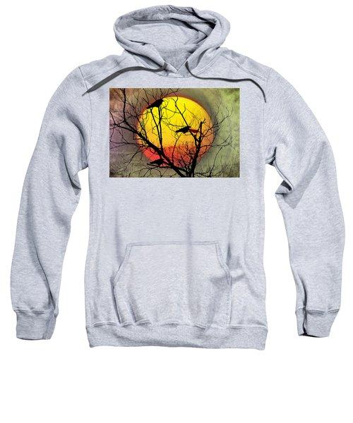 Three Blackbirds Sweatshirt by Bill Cannon