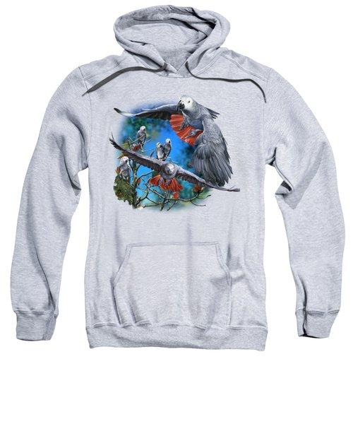 African Grey Parrots Sweatshirt by Owen Bell