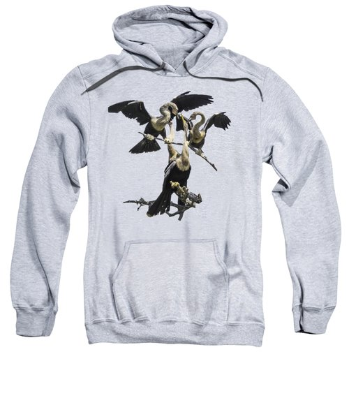 Anhinga Feeding Time Transparency Sweatshirt by Richard Goldman