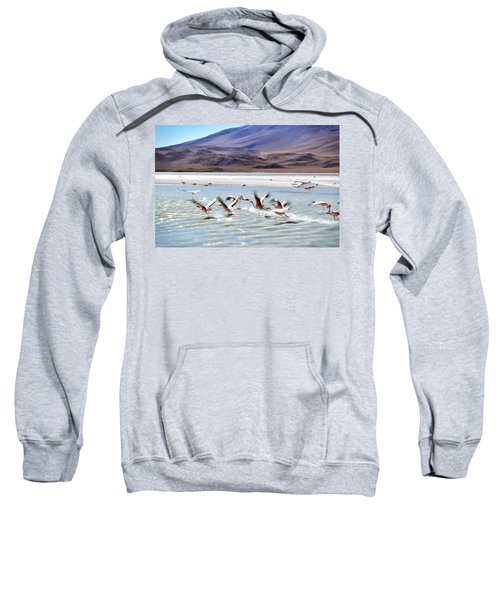 Flying Flamingos Sweatshirt by Sandy Taylor