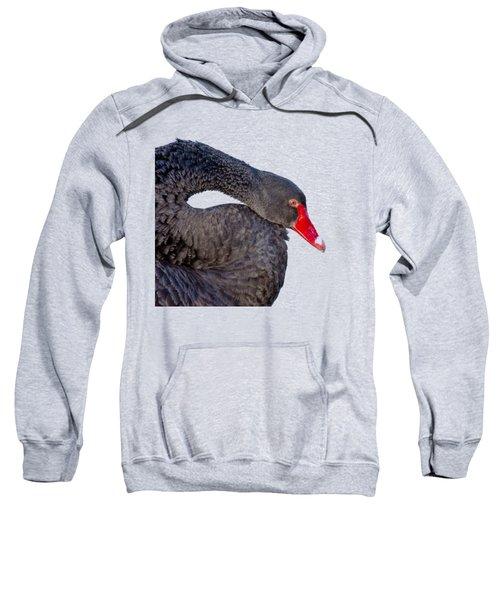 Black Swan Sweatshirt by Scott Carruthers
