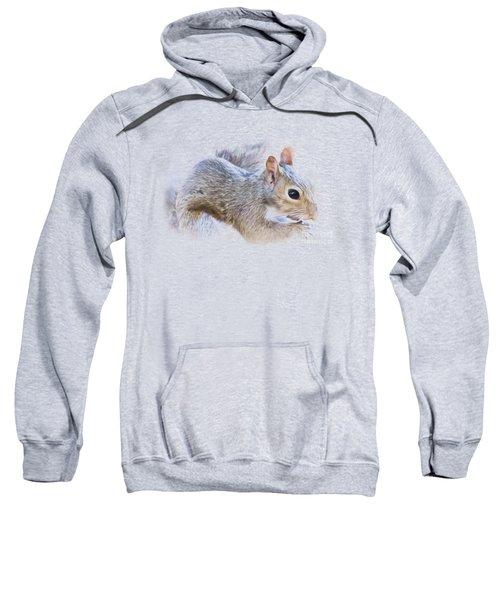 Another Peanut Please - Squirrel - Nature Sweatshirt by Barry Jones
