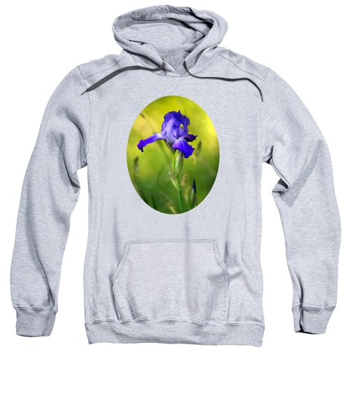 Violet Iris Sweatshirt by Christina Rollo