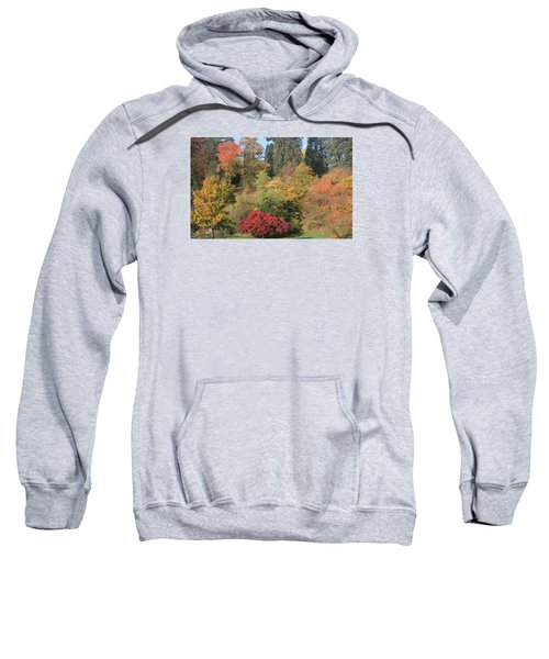Sweatshirt featuring the photograph Autumn In Baden Baden by Travel Pics