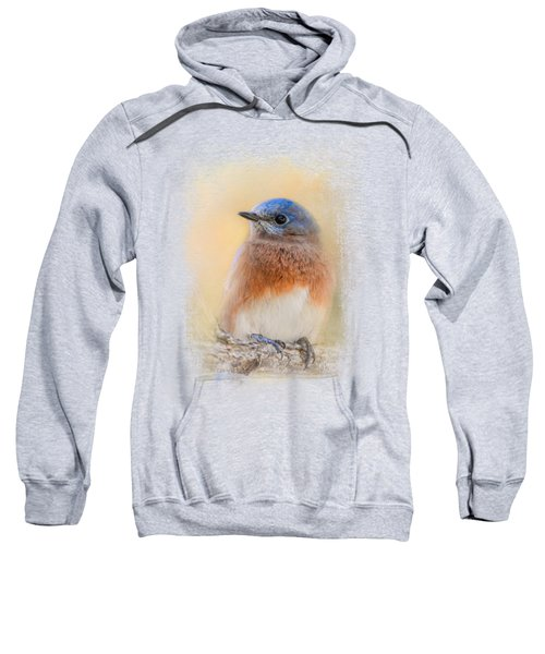 Autumn's Treasure Sweatshirt by Jai Johnson