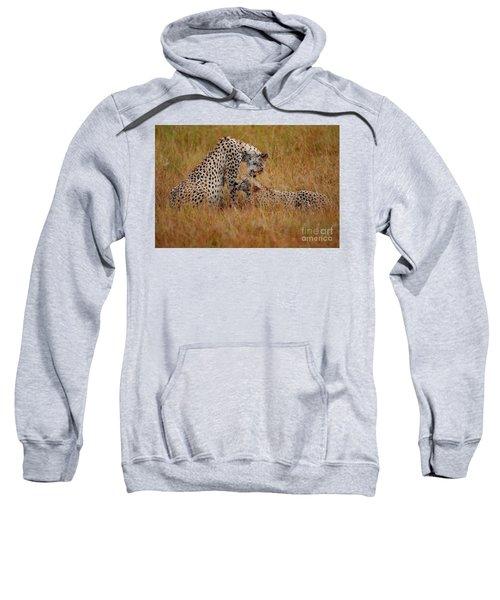 Best Of Friends Sweatshirt by Stephen Smith