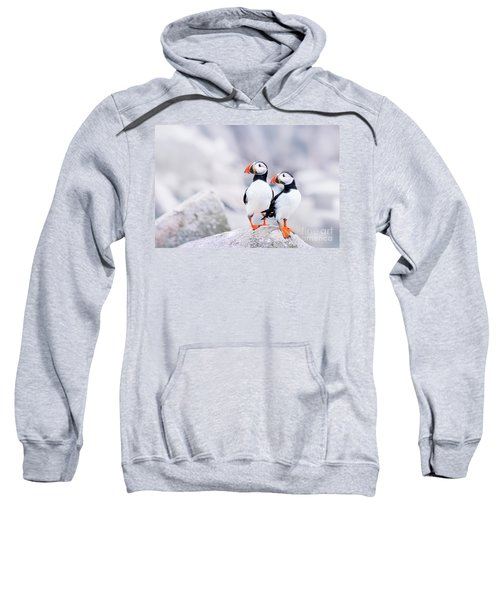 Birdland Sweatshirt by Evelina Kremsdorf