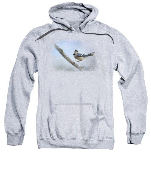 Blue Jay In The Snow Sweatshirt by Jai Johnson