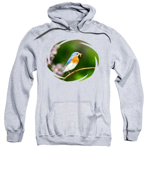 Bluebird Sweatshirt by Christina Rollo
