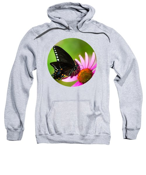 Butterfly In The Sun Sweatshirt by Christina Rollo