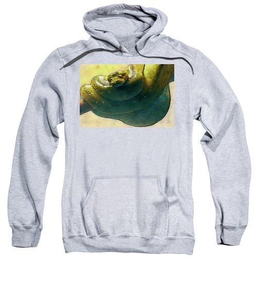 Coiled Sweatshirt by Jack Zulli