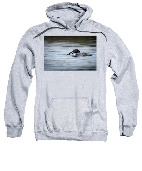 Common Loon Sweatshirt by Bill Wakeley