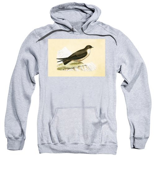Crag Swallow Sweatshirt by English School